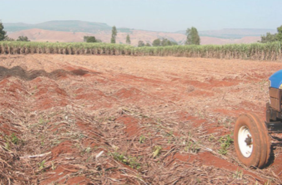Pushpak Sugarcane Ratoon Manager